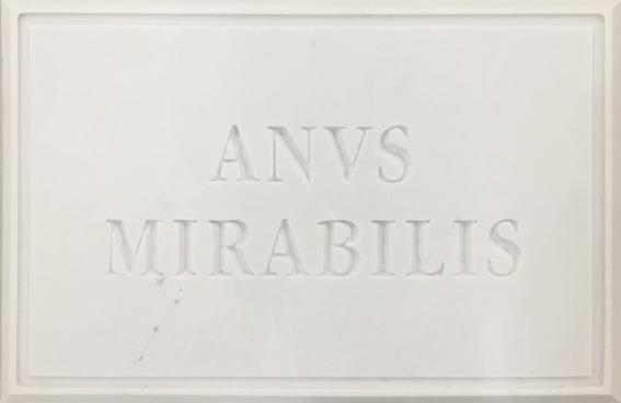 ANUS MIRABILIS